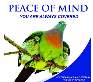 New Sudan Insurance